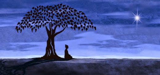Buddha-512915434a2a0c750a5253206e03bc89b627e242