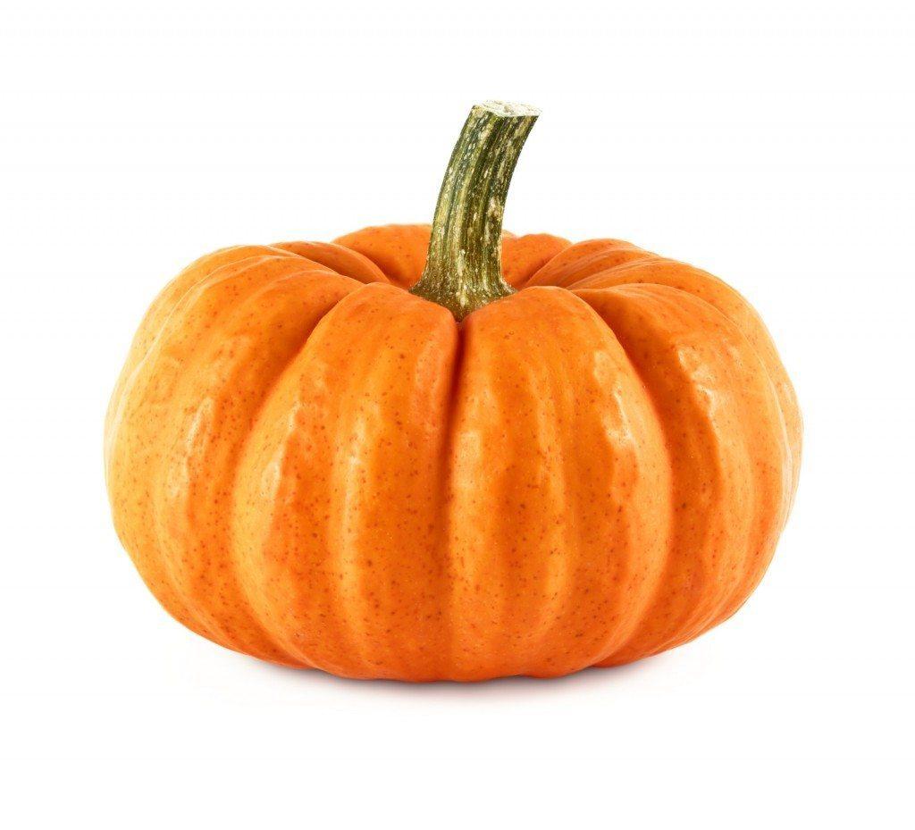 pumpkin-02[1]